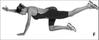 Perdigueiro: Iniciar o movimento em 4 apoios, tocando as mãos e os joelhos no solo. Retirar uma das mãos do chão, esticando o braço á frente e a perna oposta para trás. Manter membros suspensos por 10 segundos e retornar. Repetir 3 vezes.